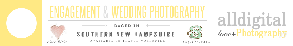 All Digital Photography – Weddings logo